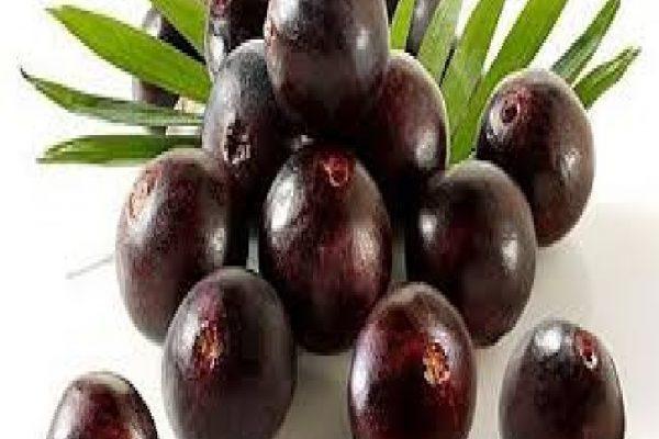 Manfaat Acai Berry Bagi Kesehatan