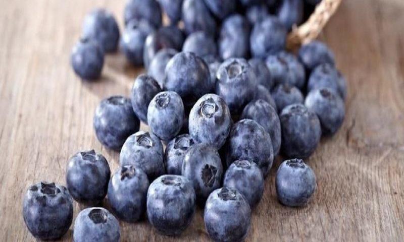 Makanan Yang Bisa Dikonsumsi Sepuasnya, Apa Tidak Bikin Gemuk?