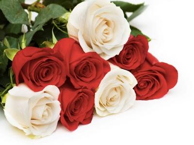 Romantis Bersama Pasangan Dengan Inspirasi Dekorasi 17 Agustus