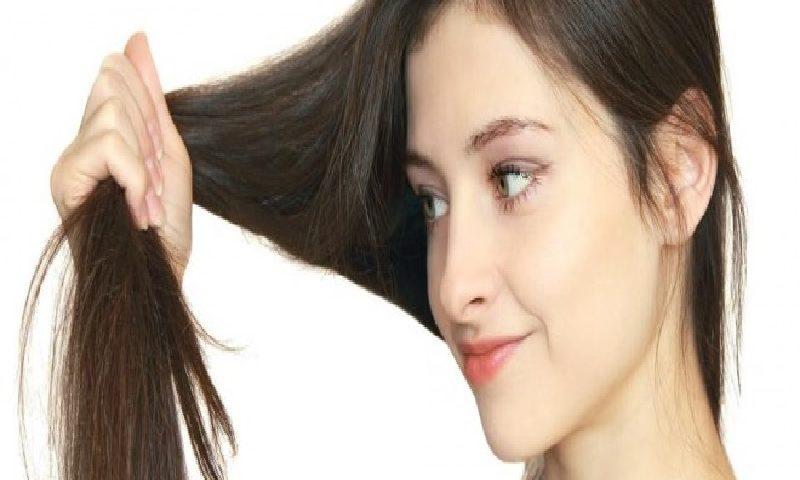 bahan alami bebaskan rambut dari ketombe