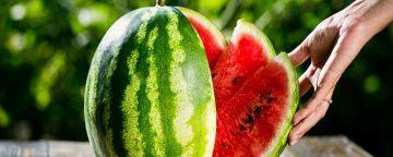 Jangan Dibuang! Kenali Manfaat Menakjubkan Kulit Semangka Untuk Kesehatan